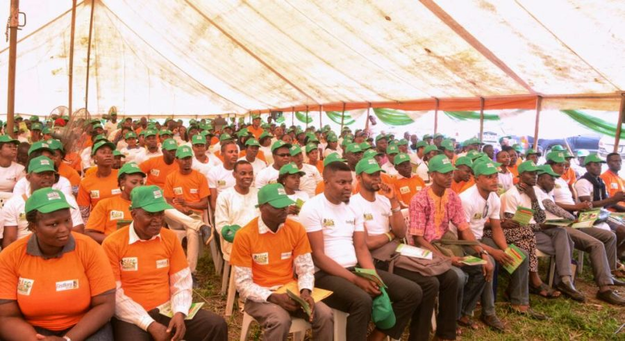 Ondo govt. trains 18,000 youths on agric-business