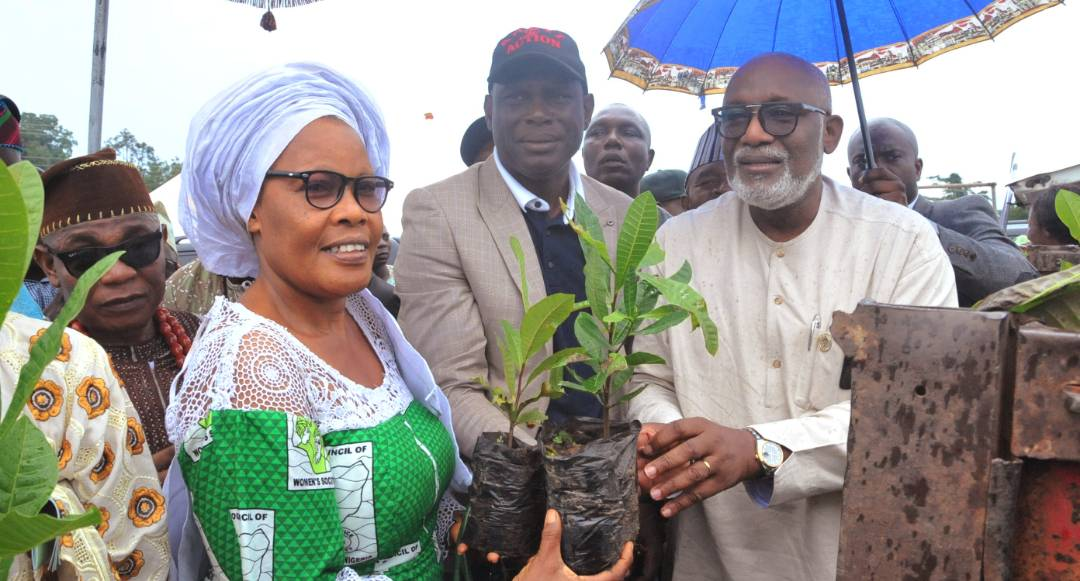 Stakeholders salute distribution of highly maturing seedlings to farmers in Ondo State